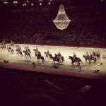 de l'école d'équitation Espagnole à Vienne